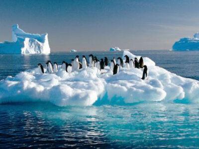 Polo Sur se calienta 3 veces más rápido que la Tierra, ve consecuencias