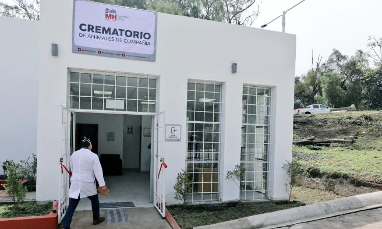 En CDMX abren primer crematorio de mascotas en la Miguel Hidalgo