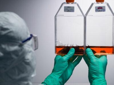 Vacuna contra el coronavirus: dos proyectos producen respuesta inmunitaria