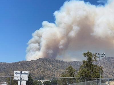 EU: incendio por altas temperaturas consume cerca de 100 hectáreas