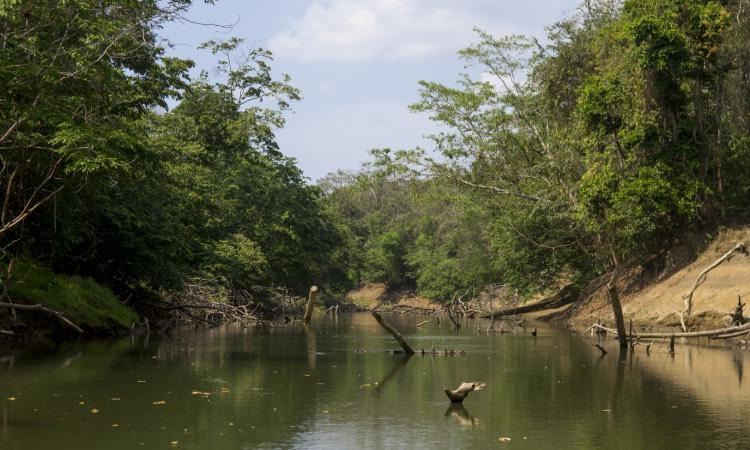 Panamá río