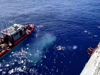 Disparan a tiburón que merodeaba muy cerca de bañistas en EU