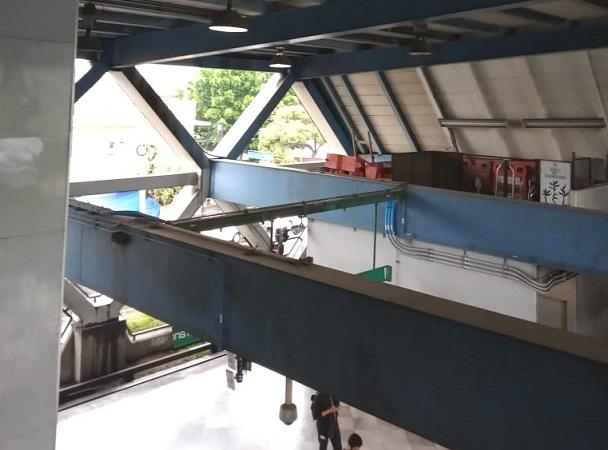 """CDMX: no hay rastro de araña """"gigante"""", dice el Metro"""