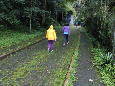Parque Macuiltéptl de Xalapa, Veracruz, reabre tras confinamiento
