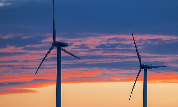 Elecciones EU: Política sobre energía renovable de Biden podría beneficiar a México