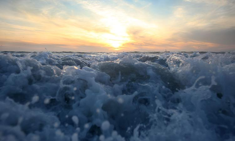 Aumento CO2 en los océanos