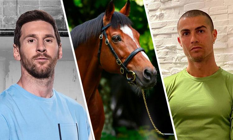 Galileo, el caballo que tiene un valor en el mercado más alto que Cristiano y Messi