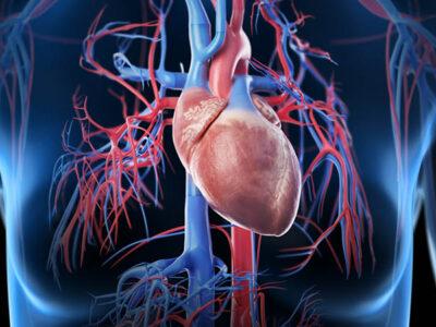 Shock hipovolémico: síntomas y medidas preventivas