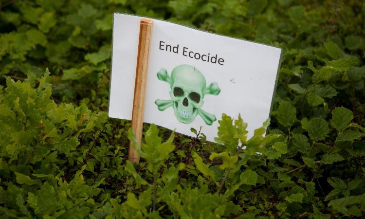 Francia creará el delito de ecocidio; castigará daños al medio ambiente