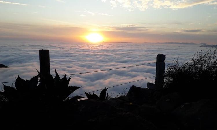 """Mar de niebla, el fenómeno que """"esconde"""" a Pinal de Amoles, Querétaro"""
