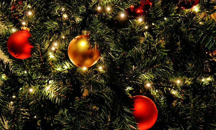 Diferencia entre árbol de Navidad natural o artificial