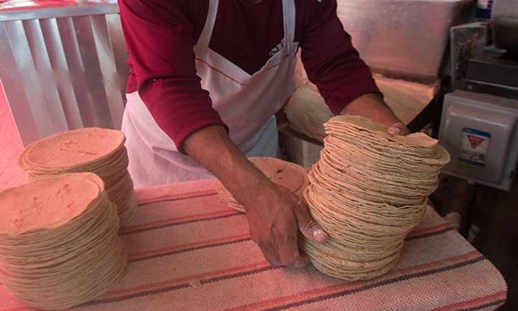 AMLO pide a productores de maíz no aumentar precio de la tortilla