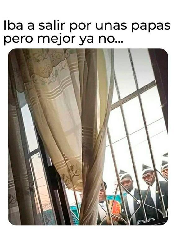Cuarentena Memes Mexico