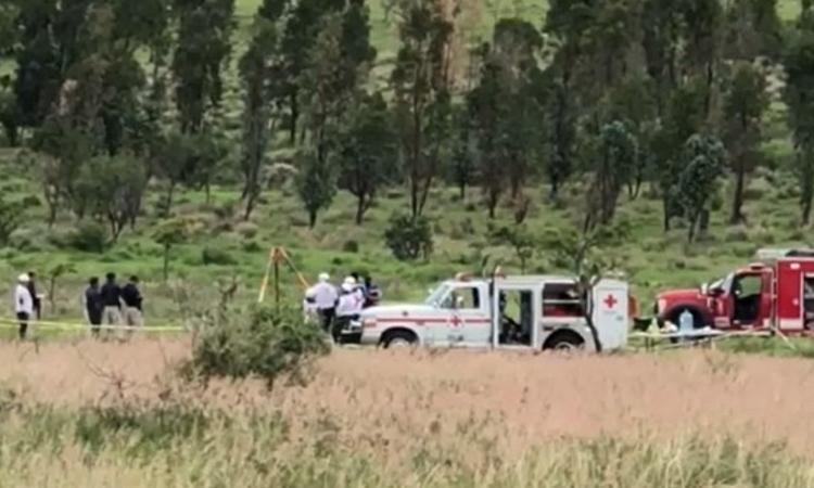 Guanajuato: hallan al menos 14 fosas clandestinas en Acámbaro