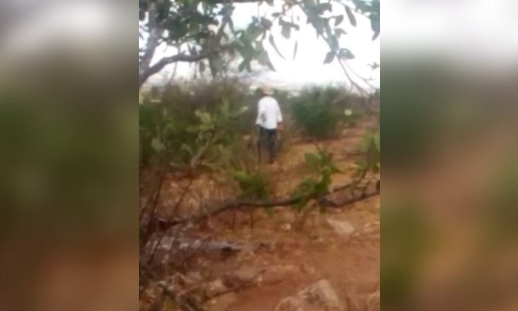 Querétaro: captan a sujeto golpeando a perrita con un palo