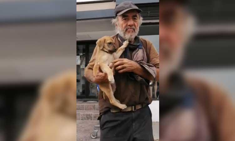 Sinaloa: roban a perrita a hombre en situación de calle en Culiacán