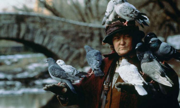 señora de las palomas pasará navidad triste y sola