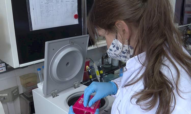 ¿Qué es el norovirus y cómo se contagia?