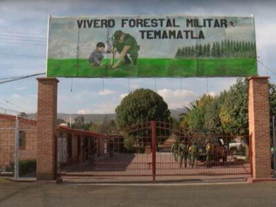 vivero forestal Militar