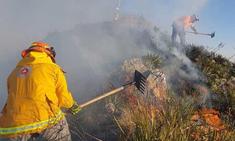 Incendio en Cerro de La Silla en imágenes; hay 7 detenidos