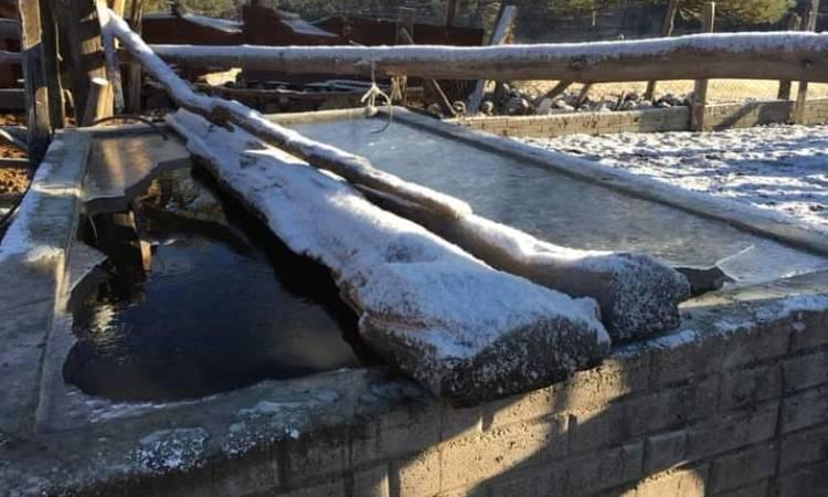 En región de Guanaceví, Durango, reportan temperaturas de -18 grados