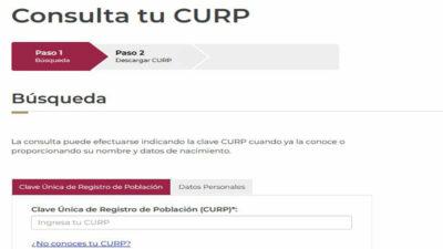 CURP: cómo imprimir y recuperar la Clave Única de Registro de Población