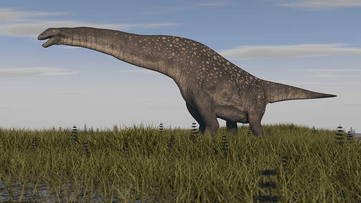 Titanosaurio, el dinosaurio hallado en Argentina que vivió hace 140 millones de años- Uno TV