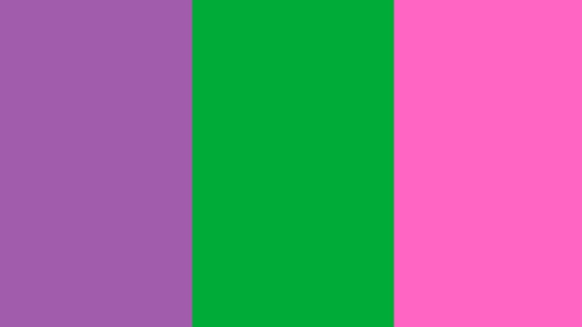 Bandera feminista 2021: ¿qué significan los colores?