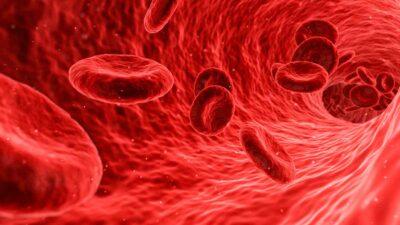 covid-19 sangre A