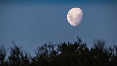 Luna de gusanos: qué es y cómo verla este 28 de marzo
