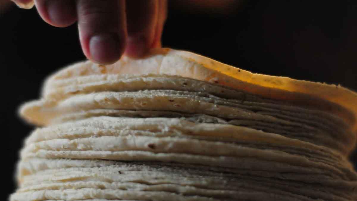 AMLO aclara que aumento en precio de tortilla se debe al costo del maíz a nivel internacional