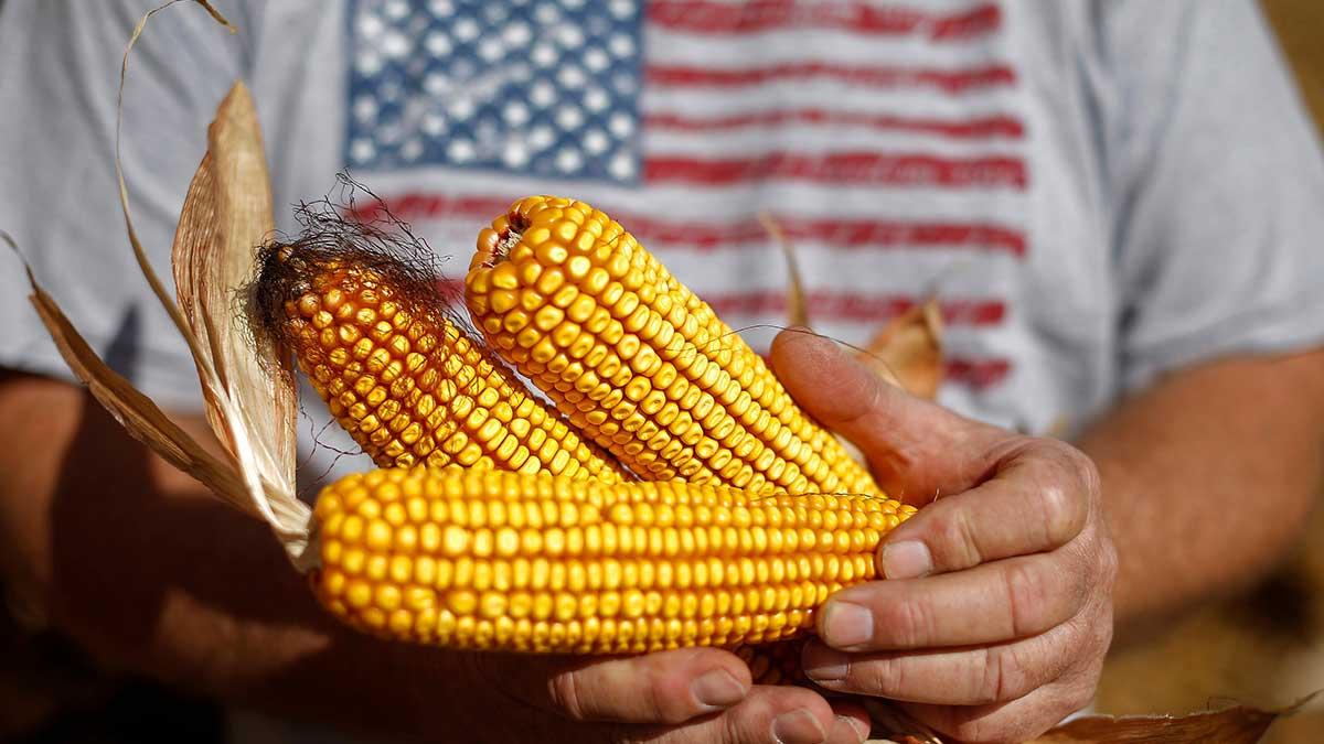 EU ayudará a agricultores de Centroamérica afectados por cambio climático