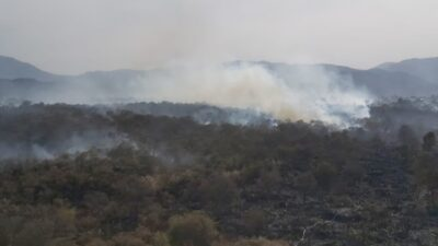 Incendio Tlalpan