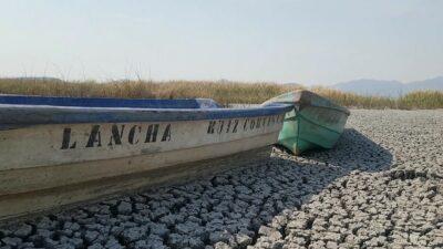 Lago Cuitzeo en Michoacán agoniza por sequía y urbanización