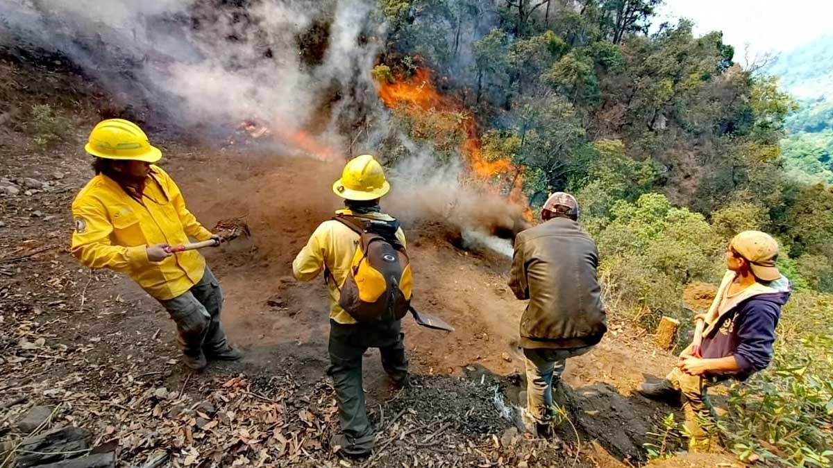 En Morelos persisten al menos cinco incendios forestales