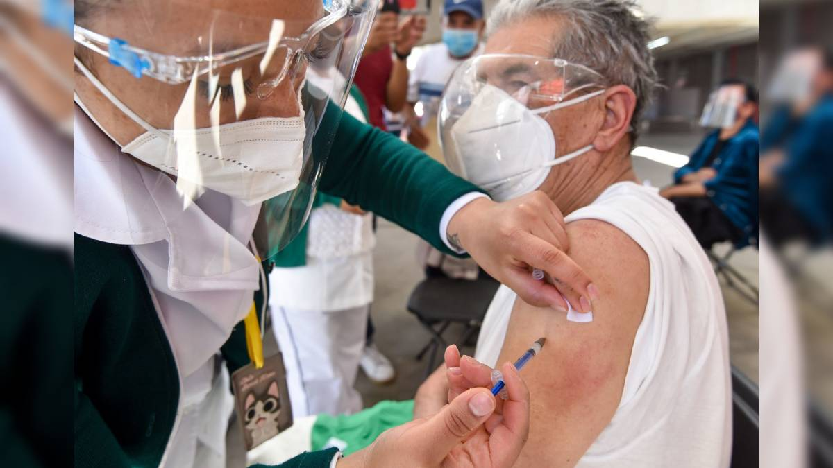 Arturo Herrera SHCP vacunas