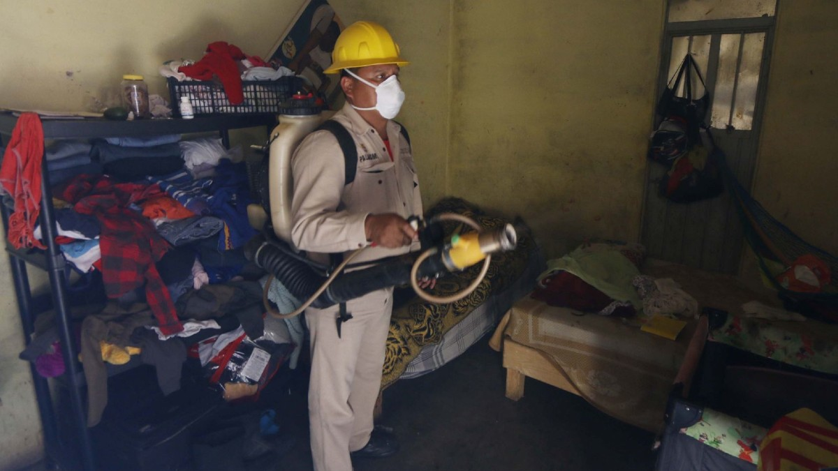 Paludismo Malaria Dia Mexico