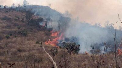Parque Sierra de Guadalupe: bomberos y brigadistas controlan incendio