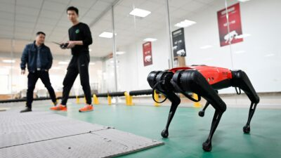 Perro Robot China Alphadog
