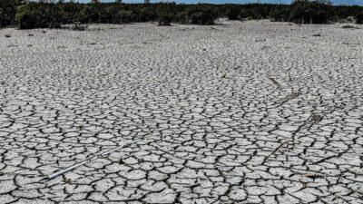 CDMX vive sequía más intensa en 30 años; hacen este llamado