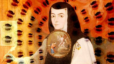 Sor Juana tifus