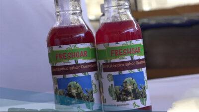UNAM elabora refresco y leche con nutritivos adicionales
