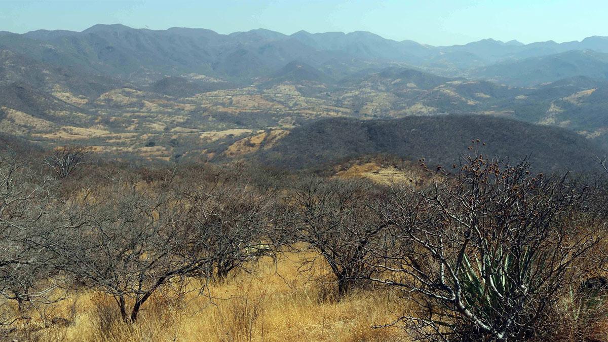 Sequía en México, el problema sigue creciendo