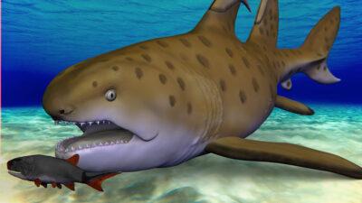 tiburón godzilla