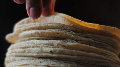 Precio de la tortilla podría subir, advierten productores