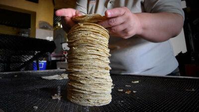 Tortilla: industriales no descartan incremento en su precio