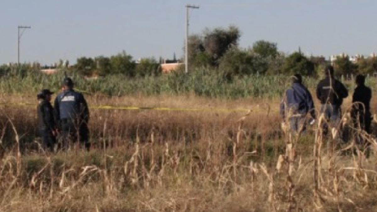 Jalisco: Hallan muertos a los 3 hermanos secuestrados en Guadalajara - Uno  TV
