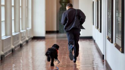 Los Obama lamentan la muerte de su perro Bo