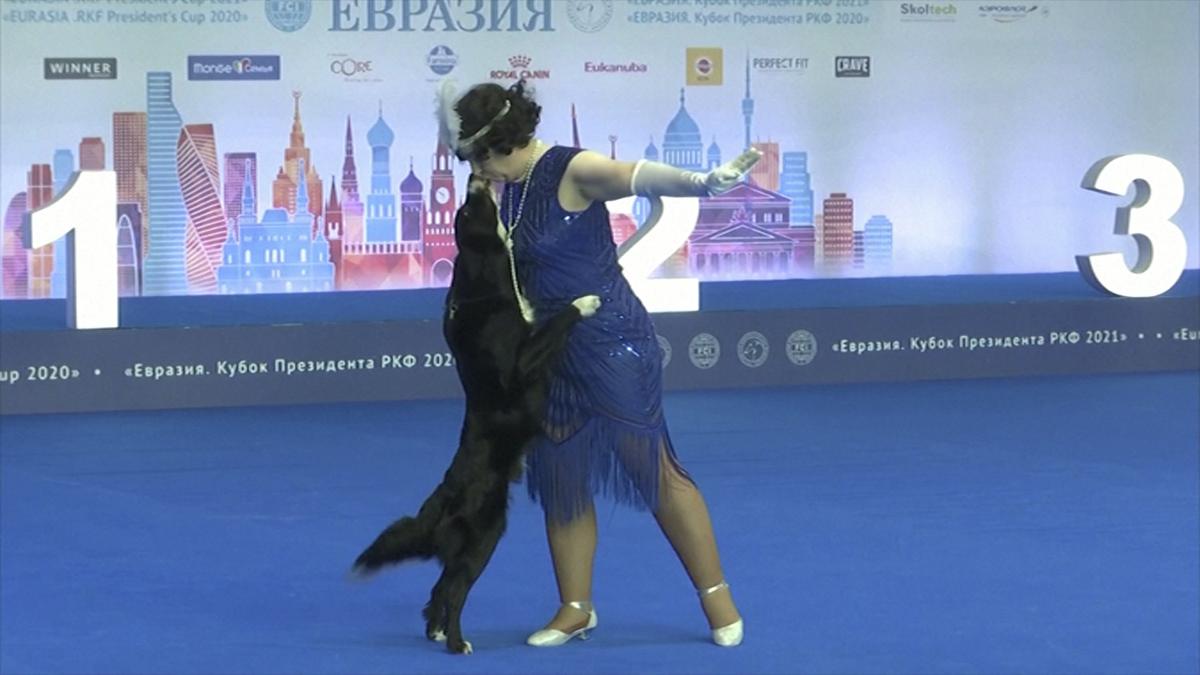 ¡Baile con perros! Concurso ruso premia los mejores pasos