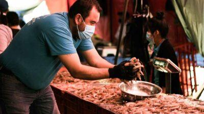 México ya no podrá exportar camarón a EU; ve por qué